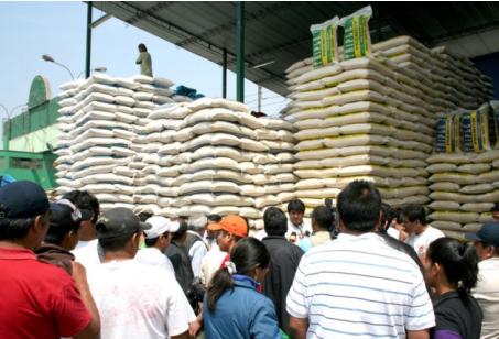Exportarán arroz a Colombia sin impuestos: